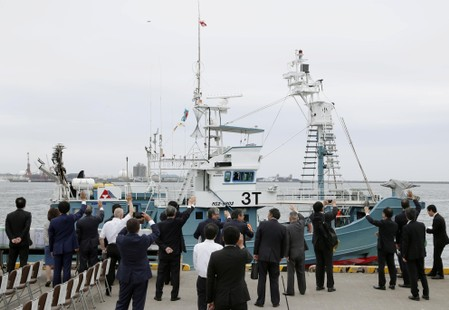Ships set off in Japans first commercial whale hunt in more than 30 years