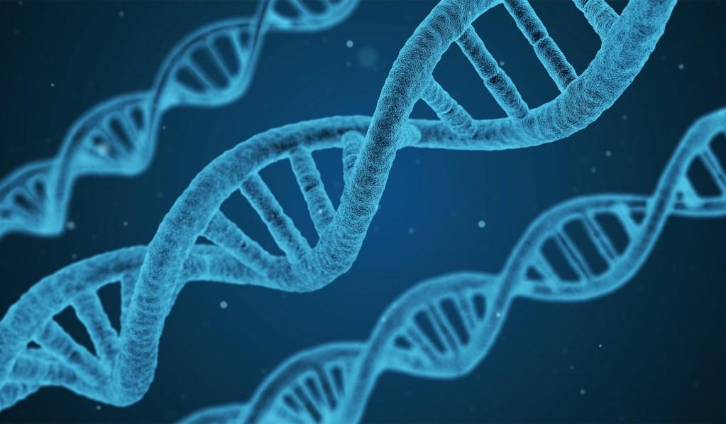 Death of the 'Gay Gene'