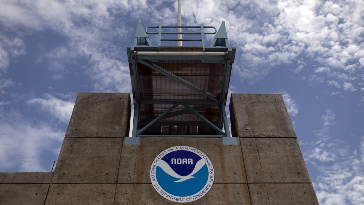 Federal Weather Workers 'Shocked' and 'Irate' by NOAA Backing Trump, Union Head Says
