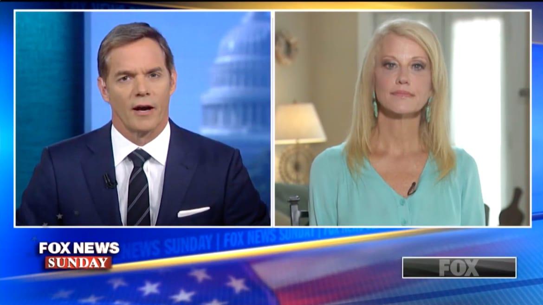 Fox News Host Confronts Kellyanne Conway on Trump's Epstein Retweet