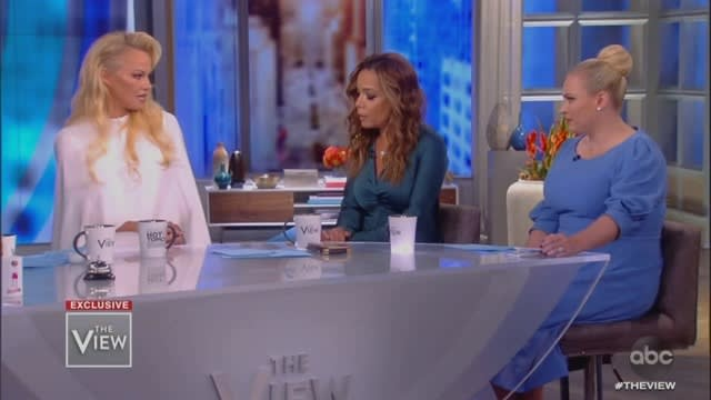 Meghan McCain Pounces on Pam Anderson Over Julian Assange: 'He's a Cyberterrorist!'
