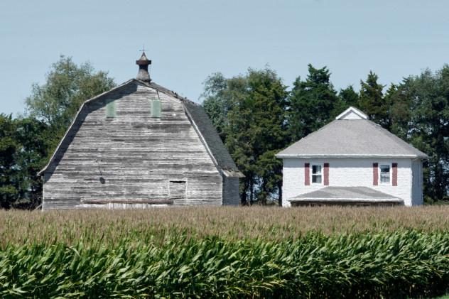 corn in Nebraska
