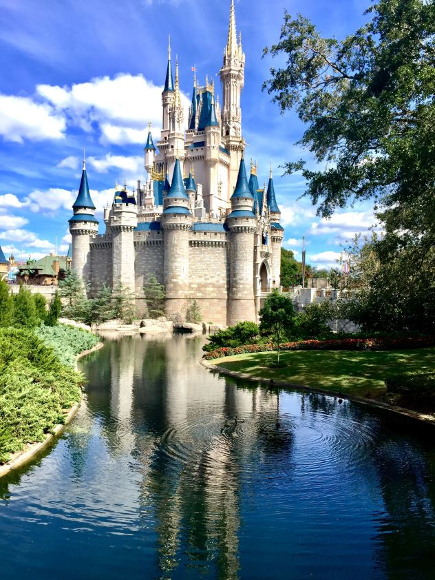 one of the best things to do in florida is Disneyland theme park