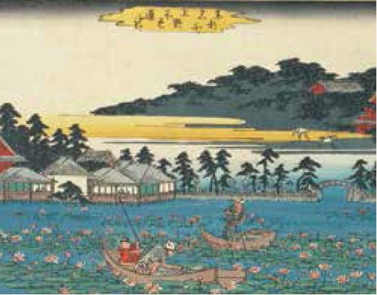 上野恩賜公園的賞蓮景點「不忍池」 池畔的茶屋竟然成為不倫男女幽會的愛情旅