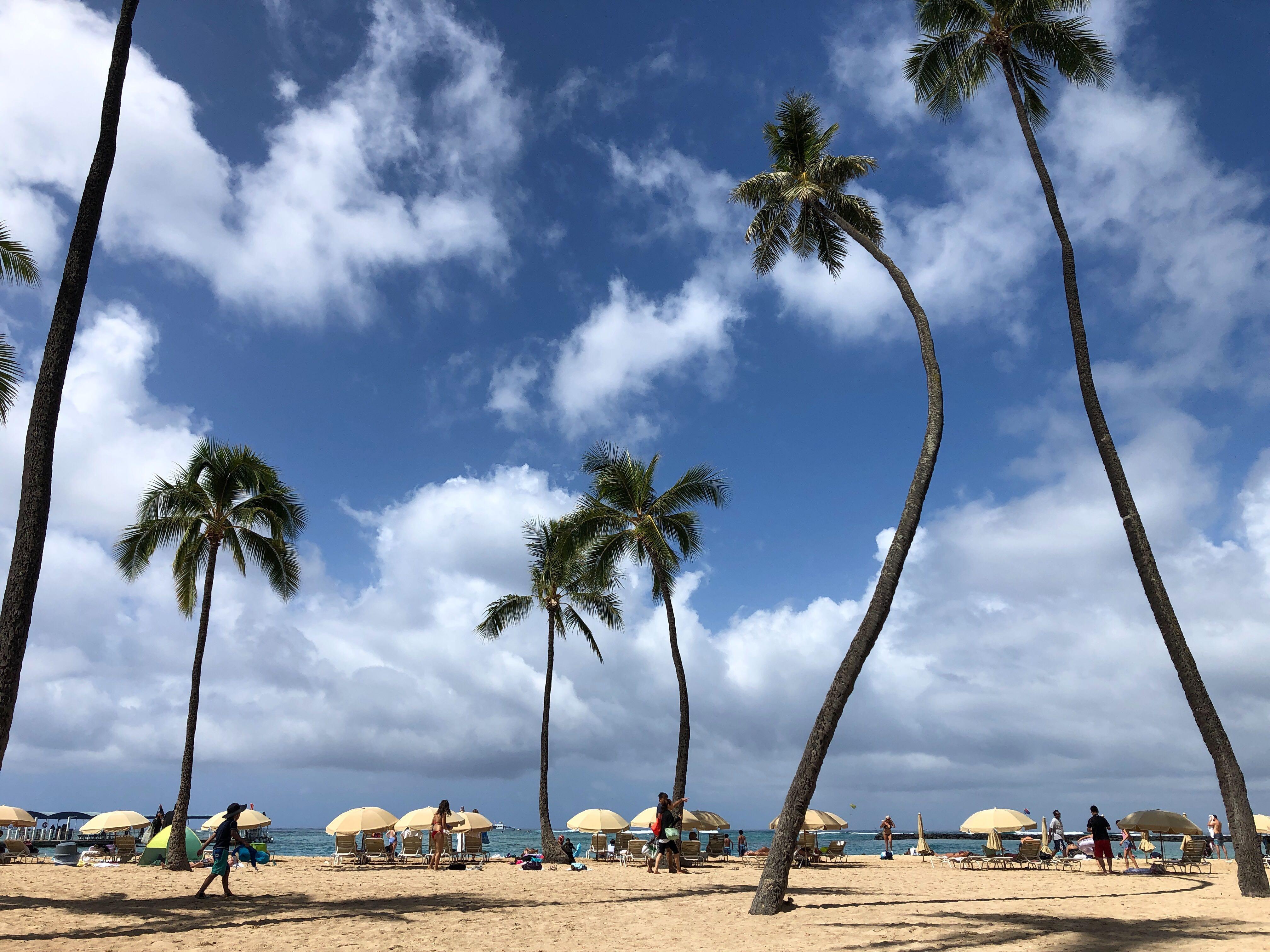 Honolulu authorities investigate arsons at 3 Waikiki hotels
