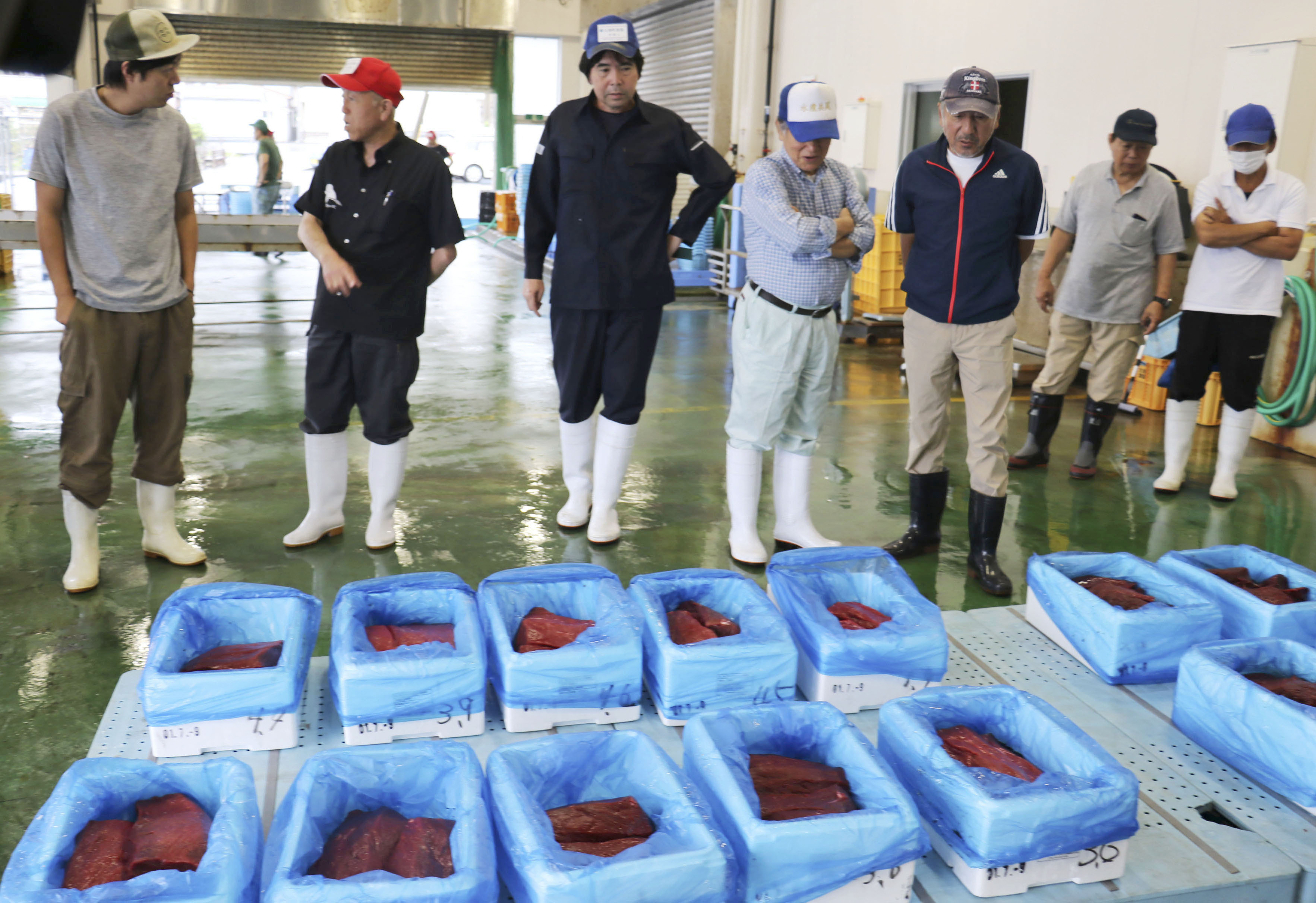 Whale meat fetches celebration prices after Japanese hunt