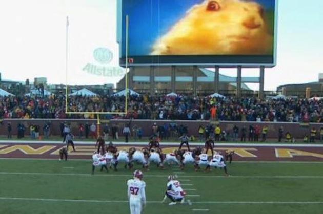 Minnesota uses 'dramatic gopher' video to distract kickers