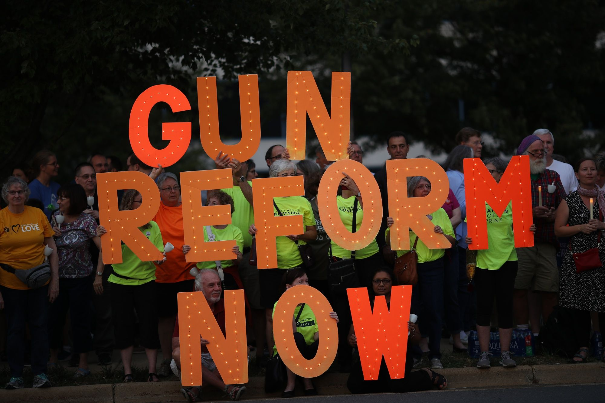 New Democratic Unity Can Overpower the NRA