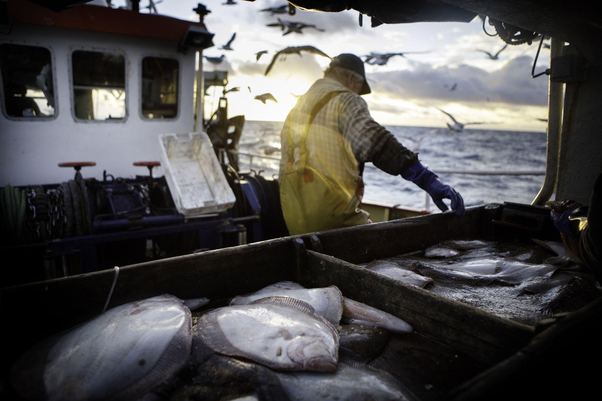 Johnson Predicts U.K.-EU Deal in 2020 Despite Fight Over Fishing