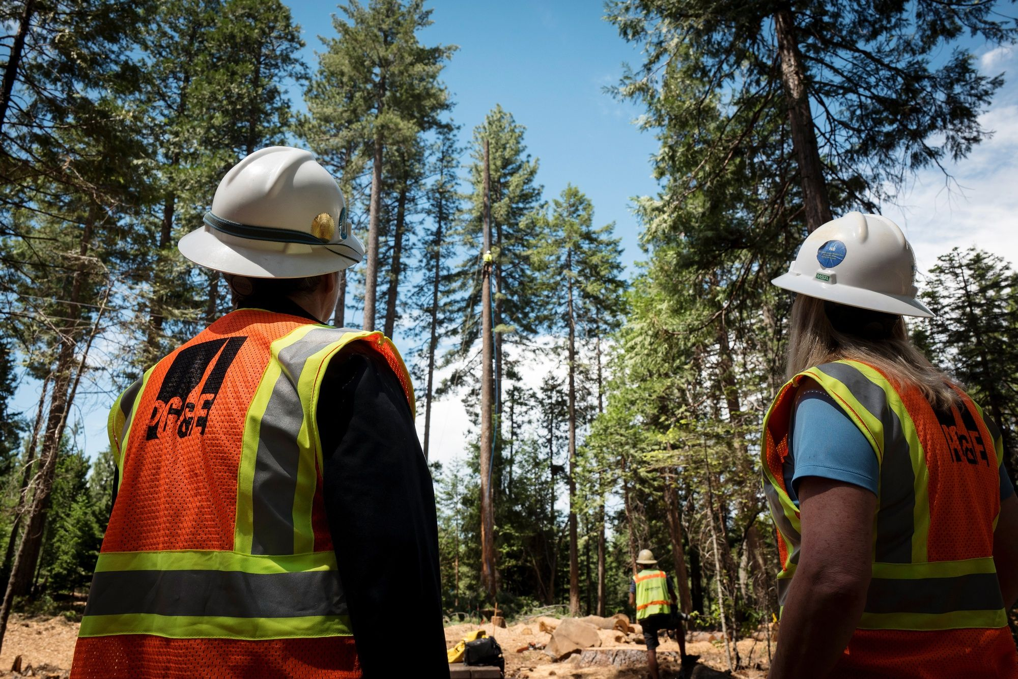 PGE Is Lobbying to Securitize Some Profits to Cover Fire Costs