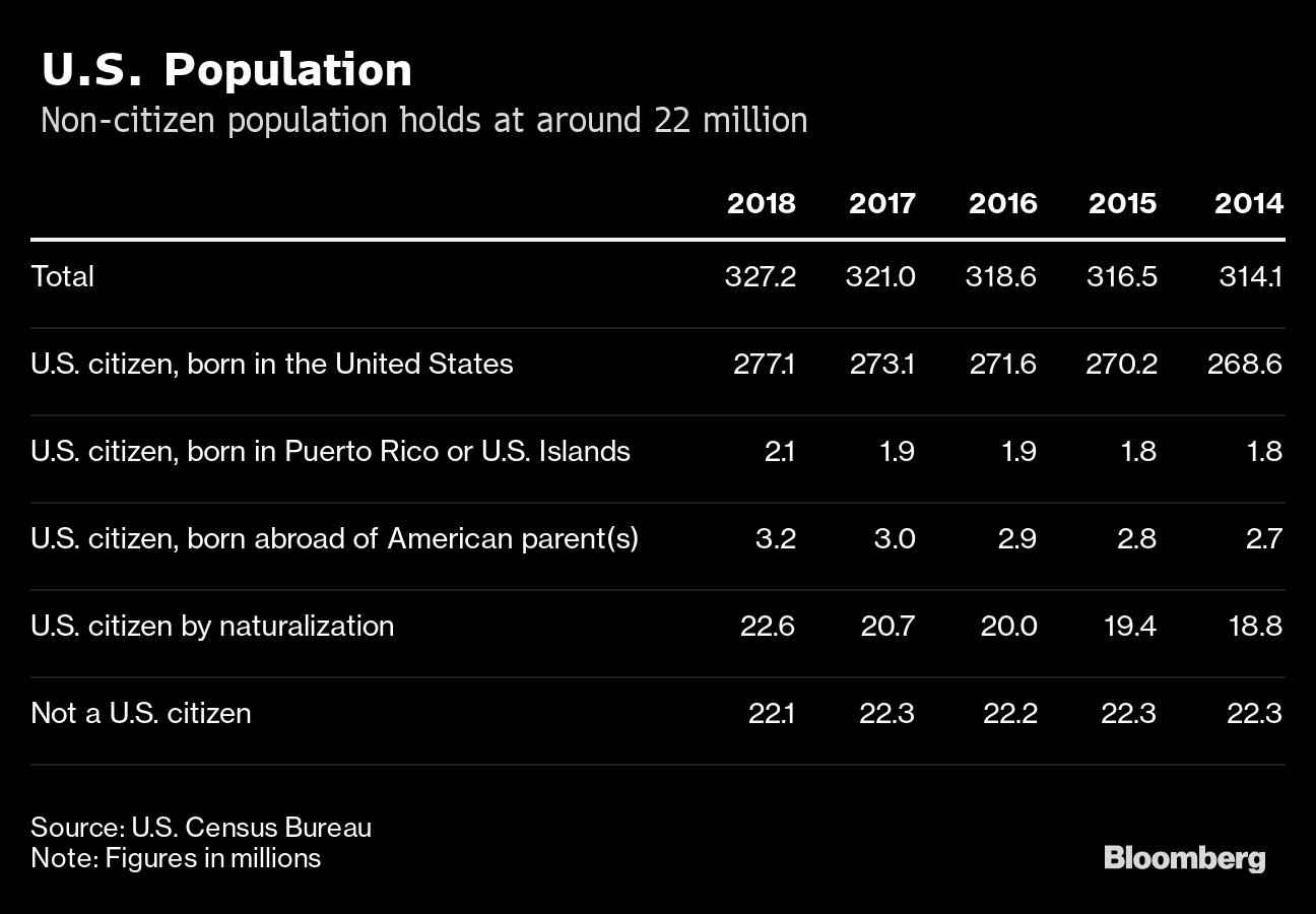 U.S. Census Finds 22.1 Million 'Not a U.S. Citizen' in Survey