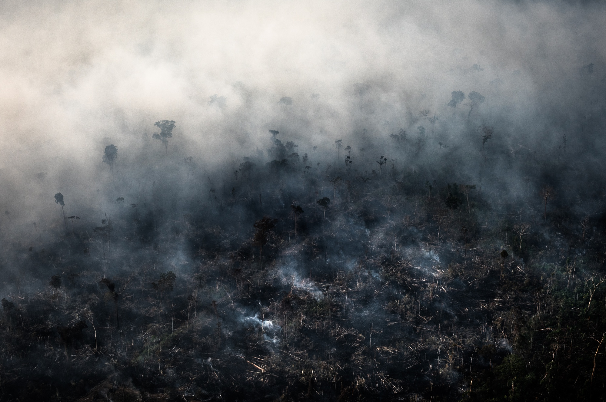 Brazil's Neighbors Are Also Burning and Poisoning the Amazon