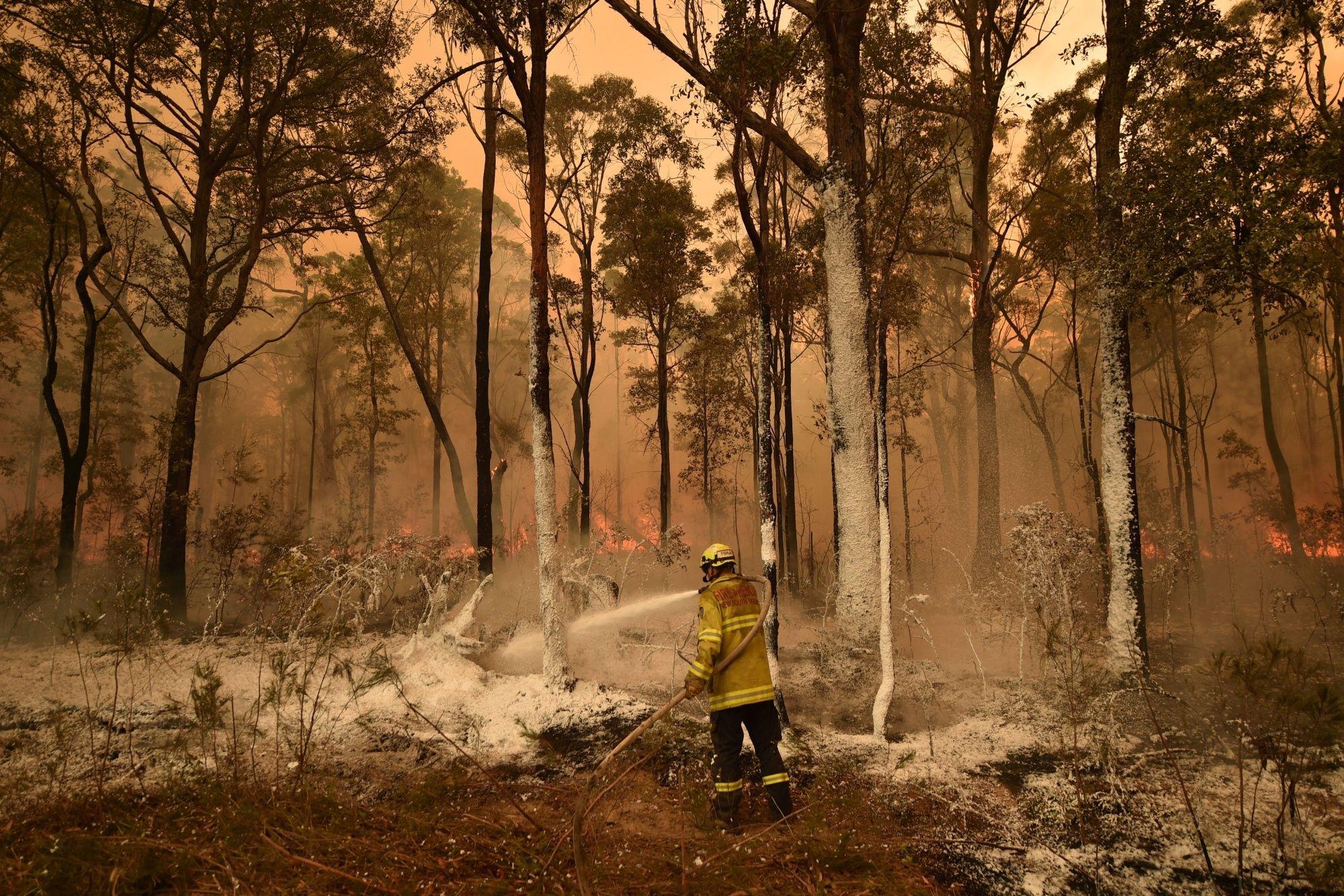 Australia Wildfires Trigger Exodus as Navy Joins Rescue Effort