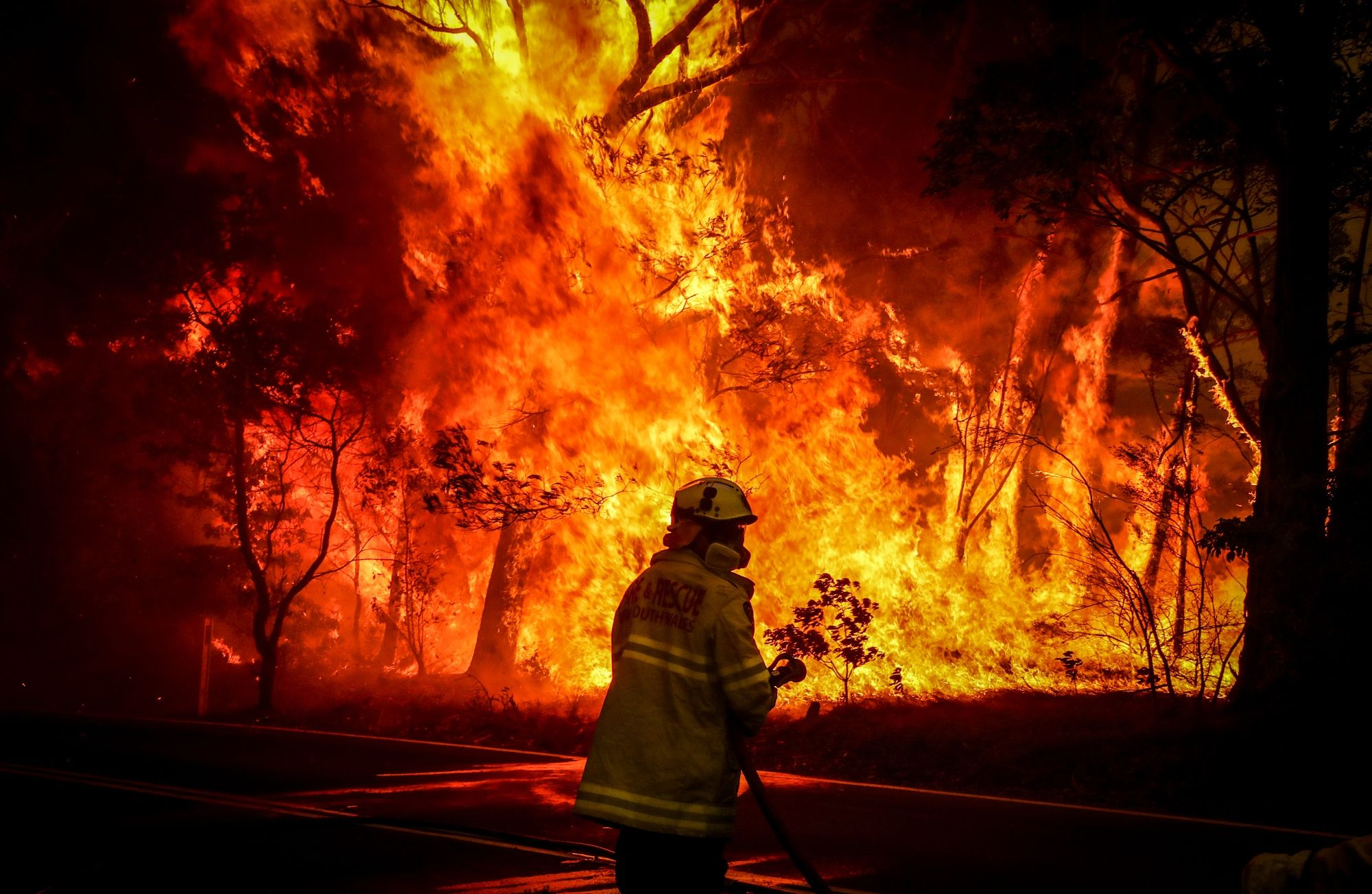 Sydney Faces 'Catastrophic' Fire Danger Amid Record Heat