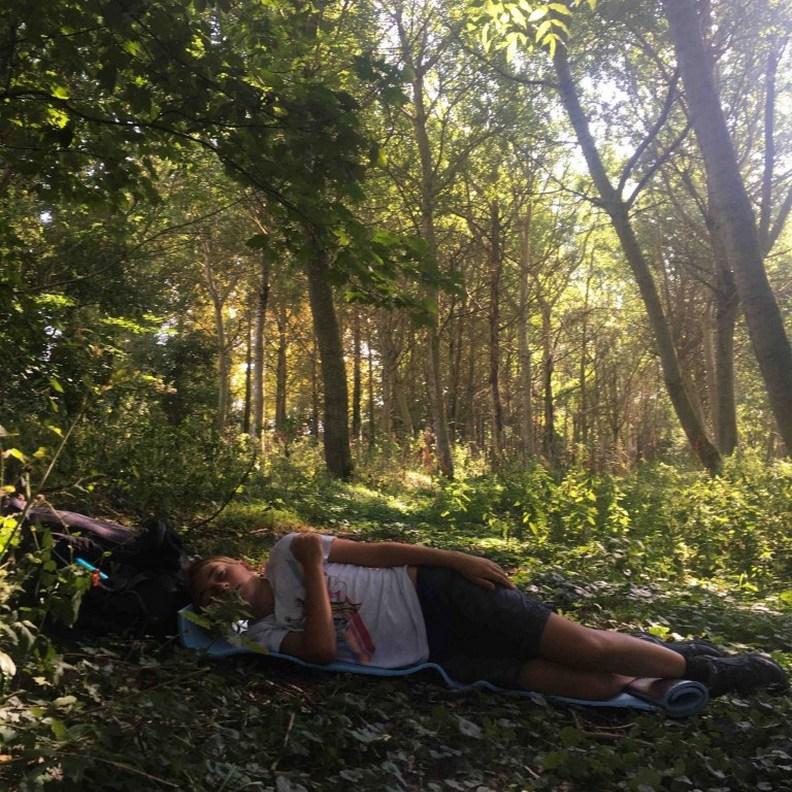 睡在樹林中的羅密歐