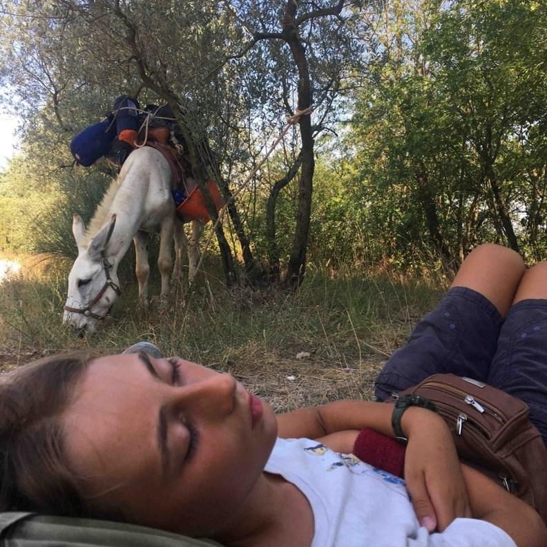 直接睡在草地上已經是家常便飯