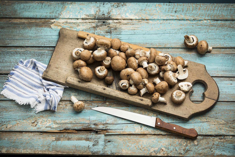 研究表明:真菌可以有益于記憶