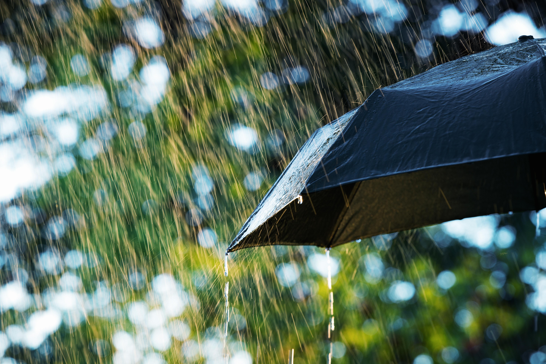 每日消息:女警在雨中哀悼死去的同事
