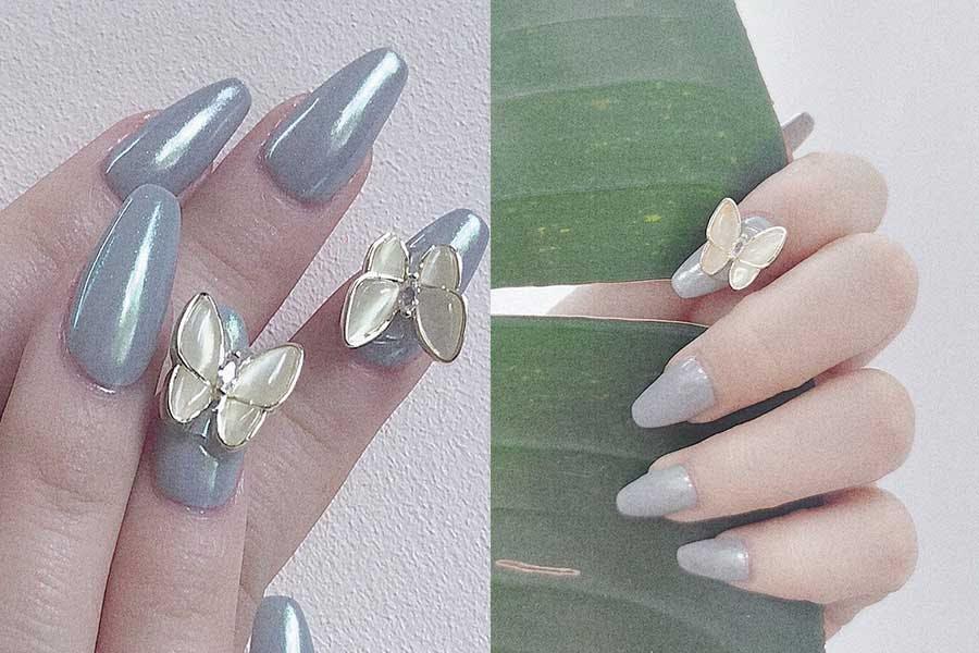 蝴蝶元素|美周報