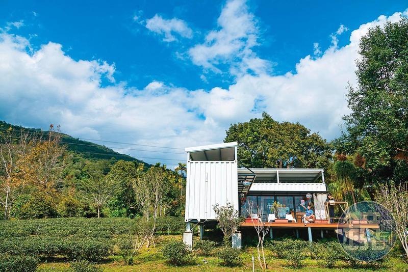 鹿野茶園中的白色貨櫃屋 來網紅景點看群山呷甜甜