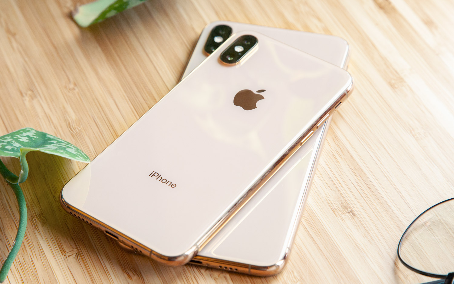 Apple Reportedly Cancels Major iPhone 11 Camera Upgrade