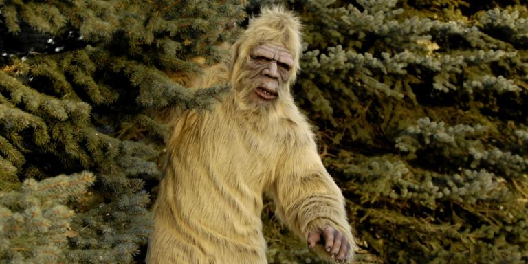 Man opens fire in national park 'because he thought he saw Bigfoot'