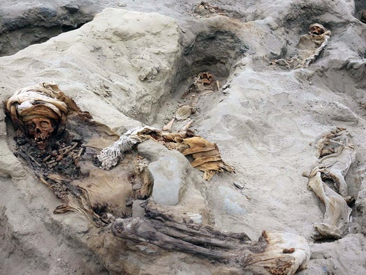 Archaeologists unearth 227 bodies in Peru in 'biggest ever' discovery of sacrificed children