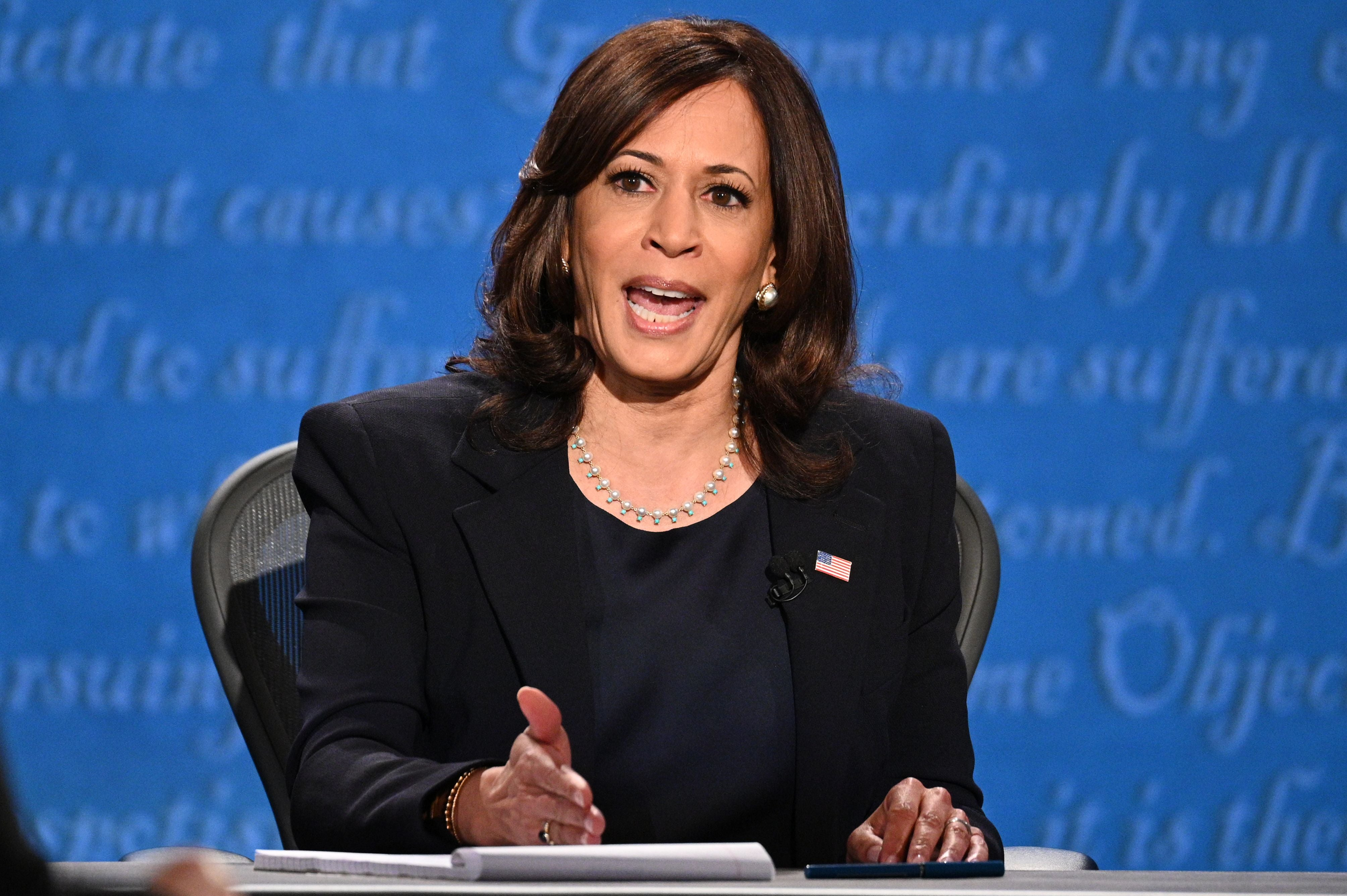 Kamala Harris fever is gripping India – but not everyone is convinced