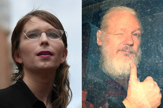 WikiLeaks: UN official accuses UK and US of torture over treatment of Assange and Manning