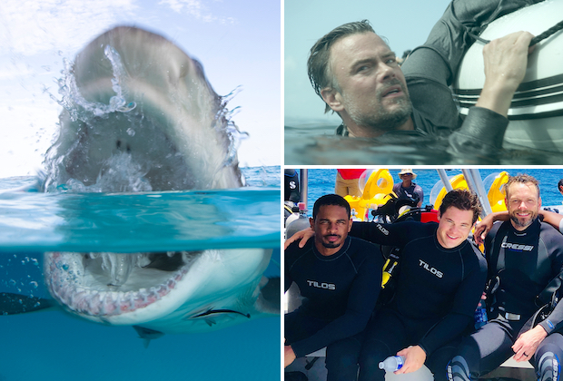 Shark Week: Your Complete Guide to Discoverys Fincredible Programming