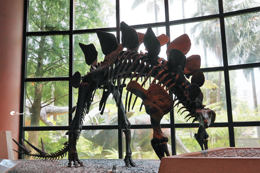 國立自然科學博物