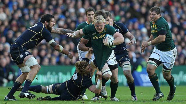 Rugby - Strauss sees South Africa sink Scotland