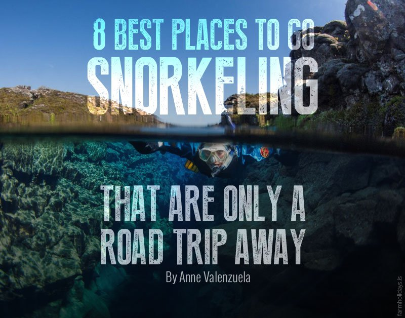 8 Best Places To Go Snorkeling That Are Only A Road Trip