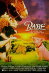 Poster of Babe