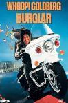 Poster of Burglar