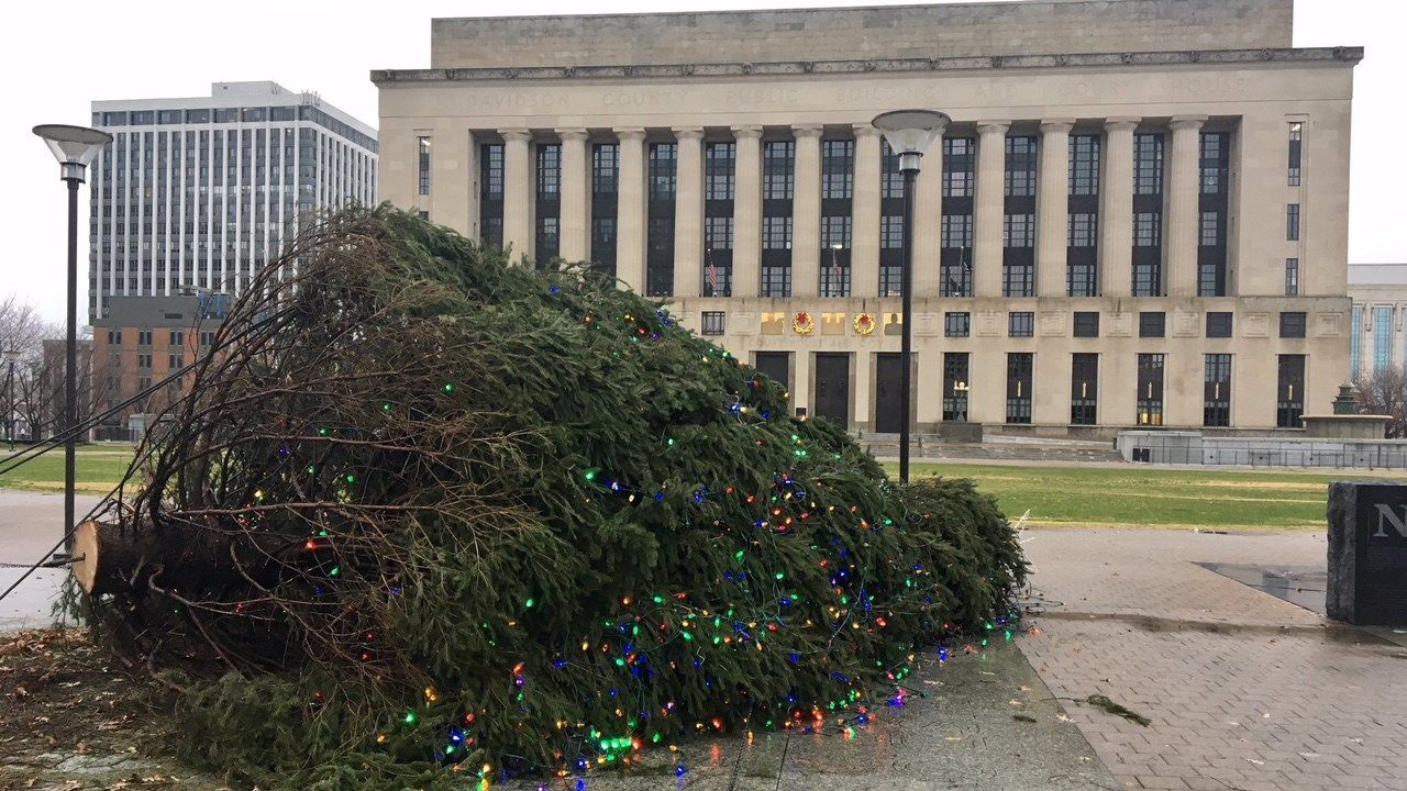 O Christmas tree! Storm topples Tennessee's holiday spruce