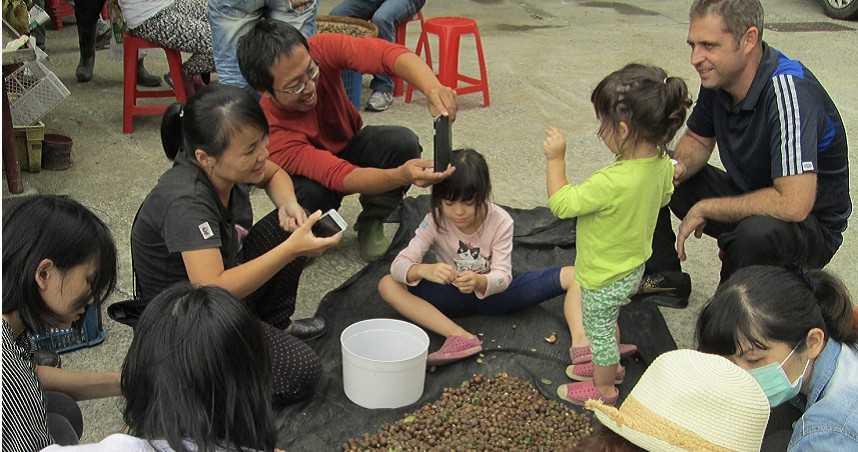 10斤苦茶籽萃取1斤苦茶油 農村女力崛起三代傳承堅持有機