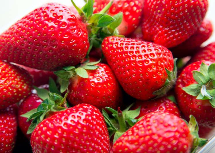 日本草莓怎麼吃?水果達人教你挑選「草莓、柿子、蜜柑、蘋果」小撇步