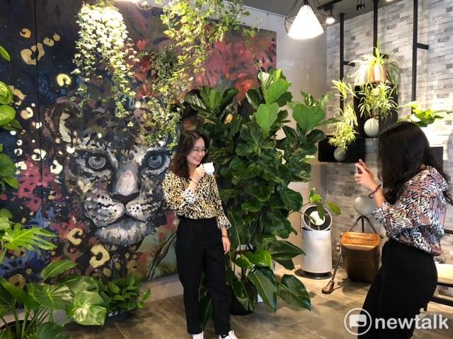 美洲豹熱帶叢林闖進咖啡店 「珈琲地圖」成網美熱門打卡景點