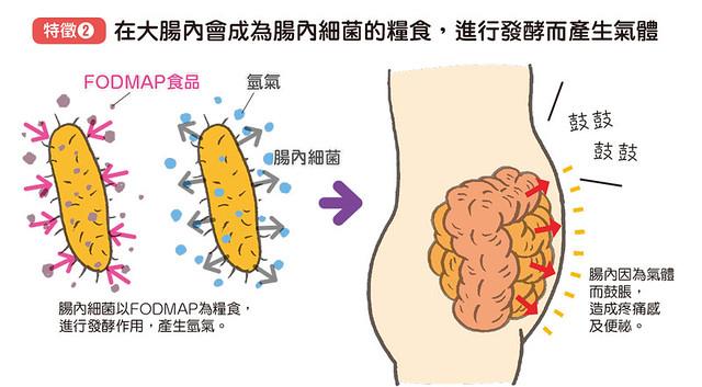 FODMAP食物容易在腸子內發酵、產生氣體
