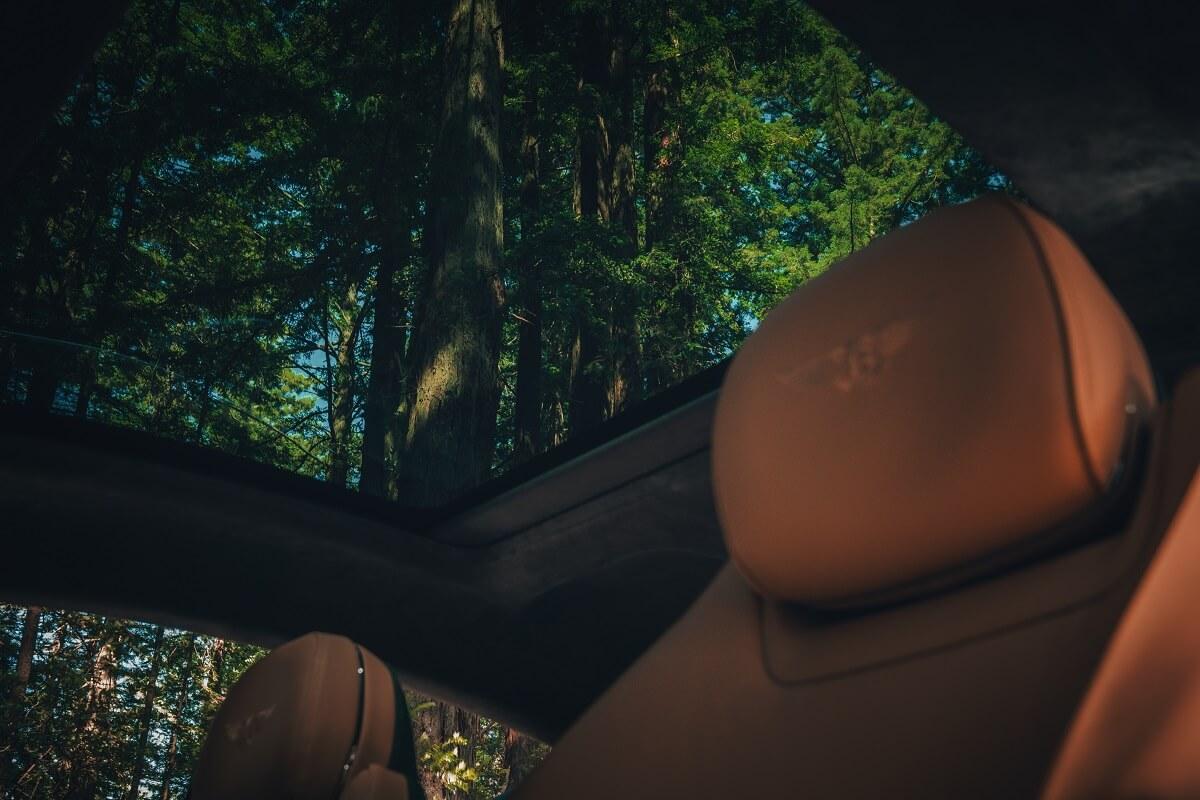 Bentley Continental GT 21MY - 2.jpg