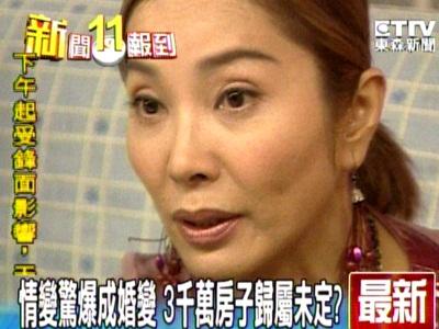 8年前美結婚?陳美鳳情變是婚變?