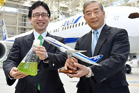 太神奇!綠眼蟲也能作成燃油 讓飛機翱翔