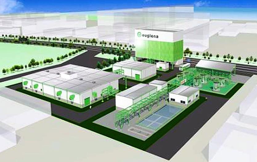 ▲Euglena預定在2018年於日本橫濱市,完成綠眼蟲生質燃料提煉工廠的設置。