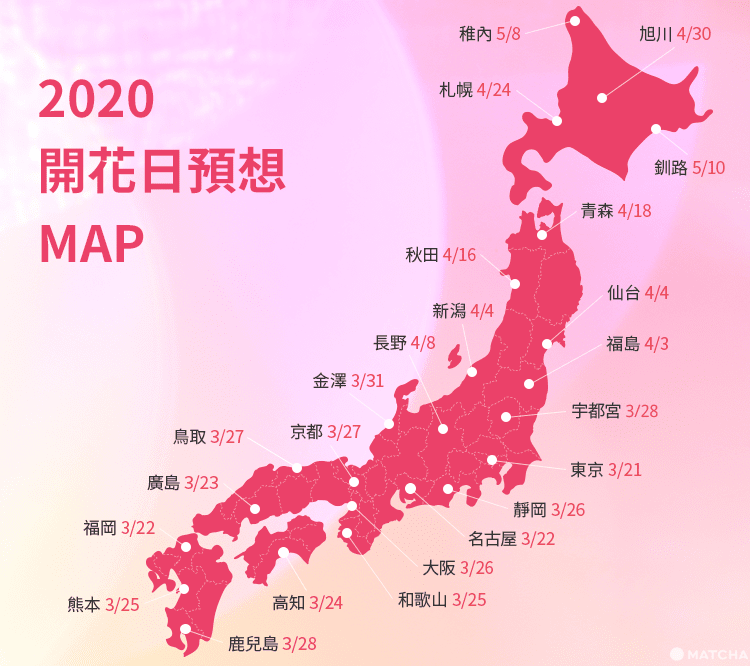 日本櫻花 2020