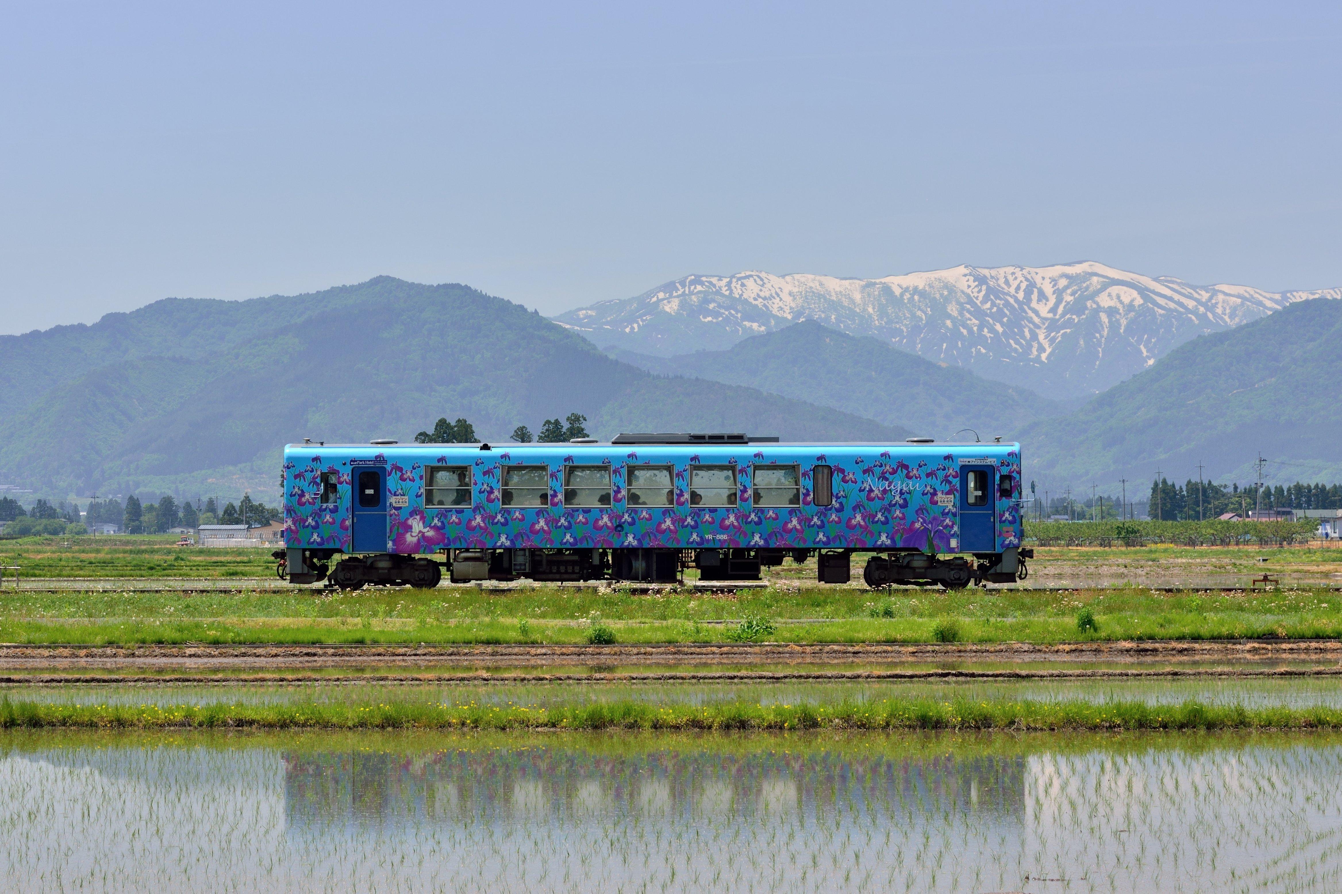 長井線菖蒲列車