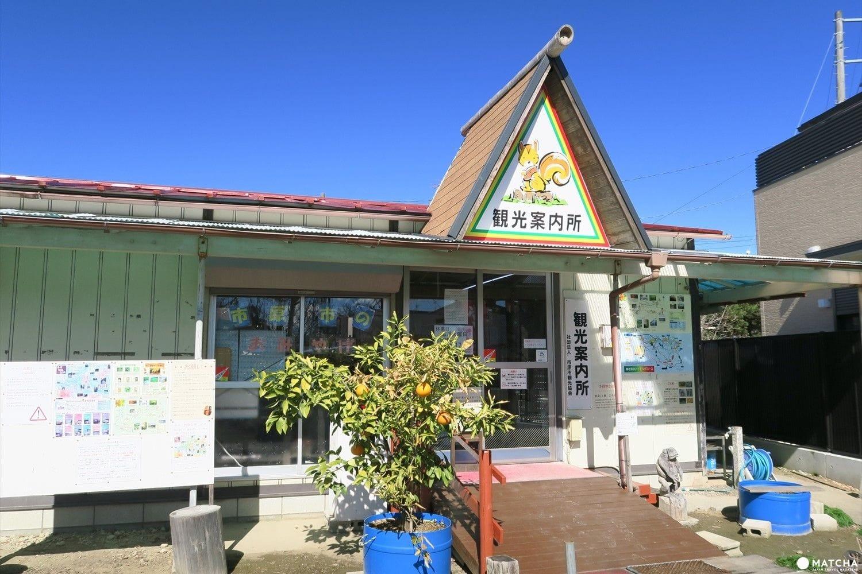 【東京近郊】千葉縣・養老渓谷四季分明的美麗川邊景色