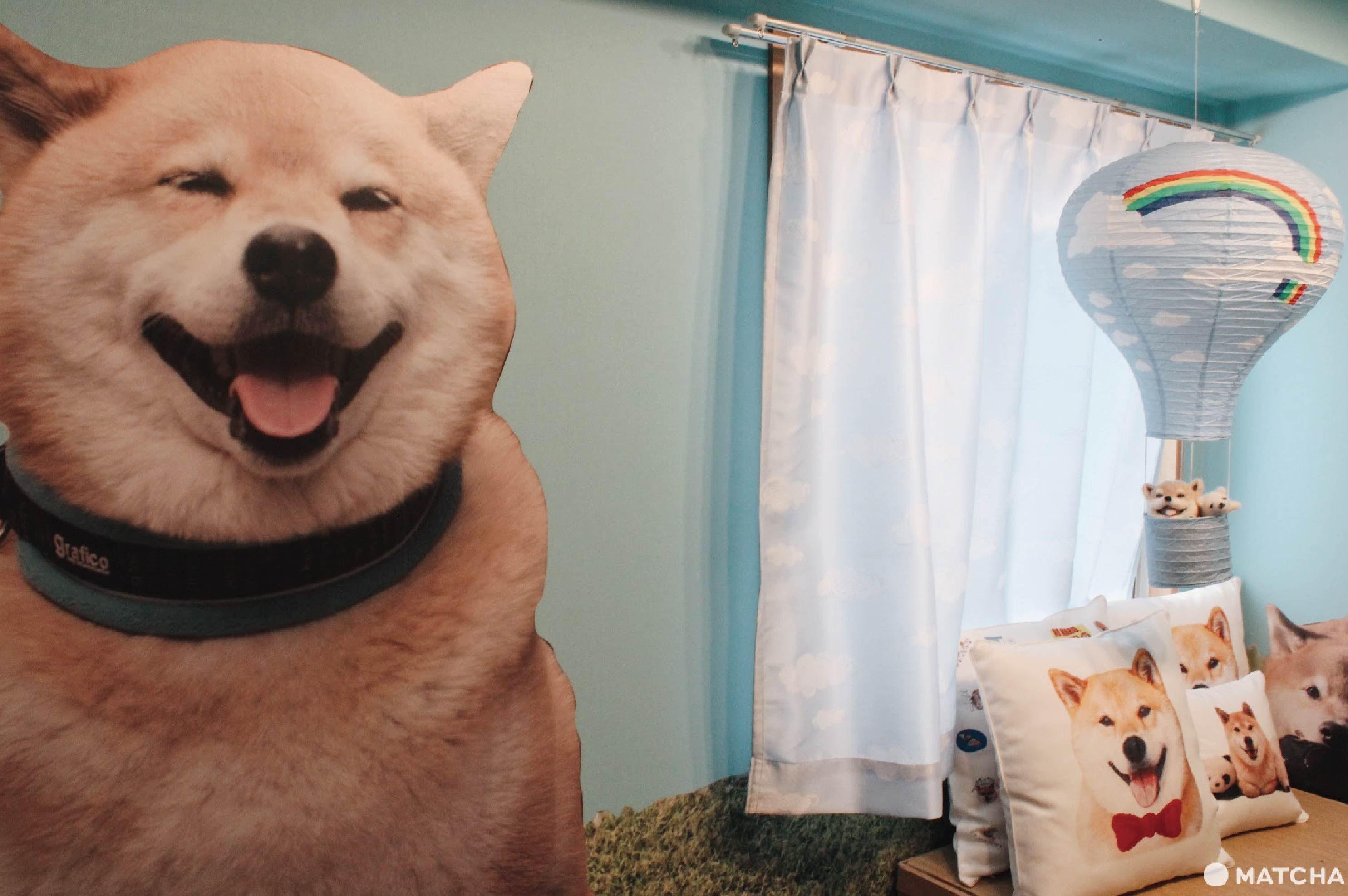 柴犬MARU醬的遊戲部屋