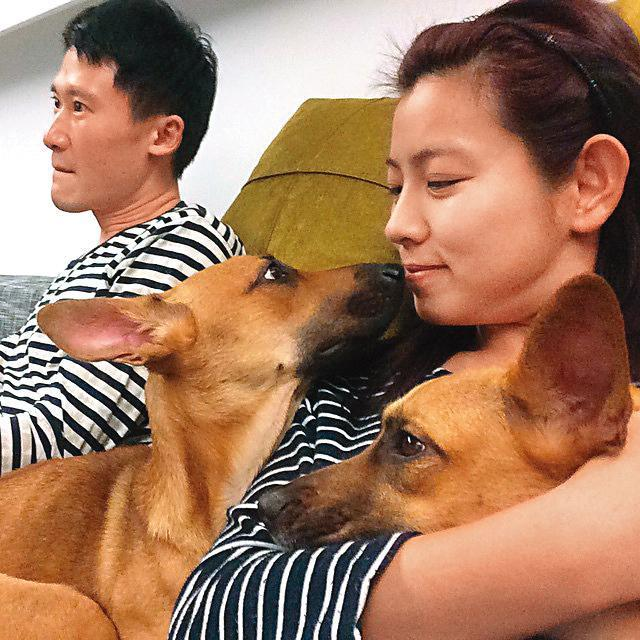 決定不生小孩的米可白與謝銘杰,把狗寶貝當成小孩疼愛。(翻攝自米可白IG)