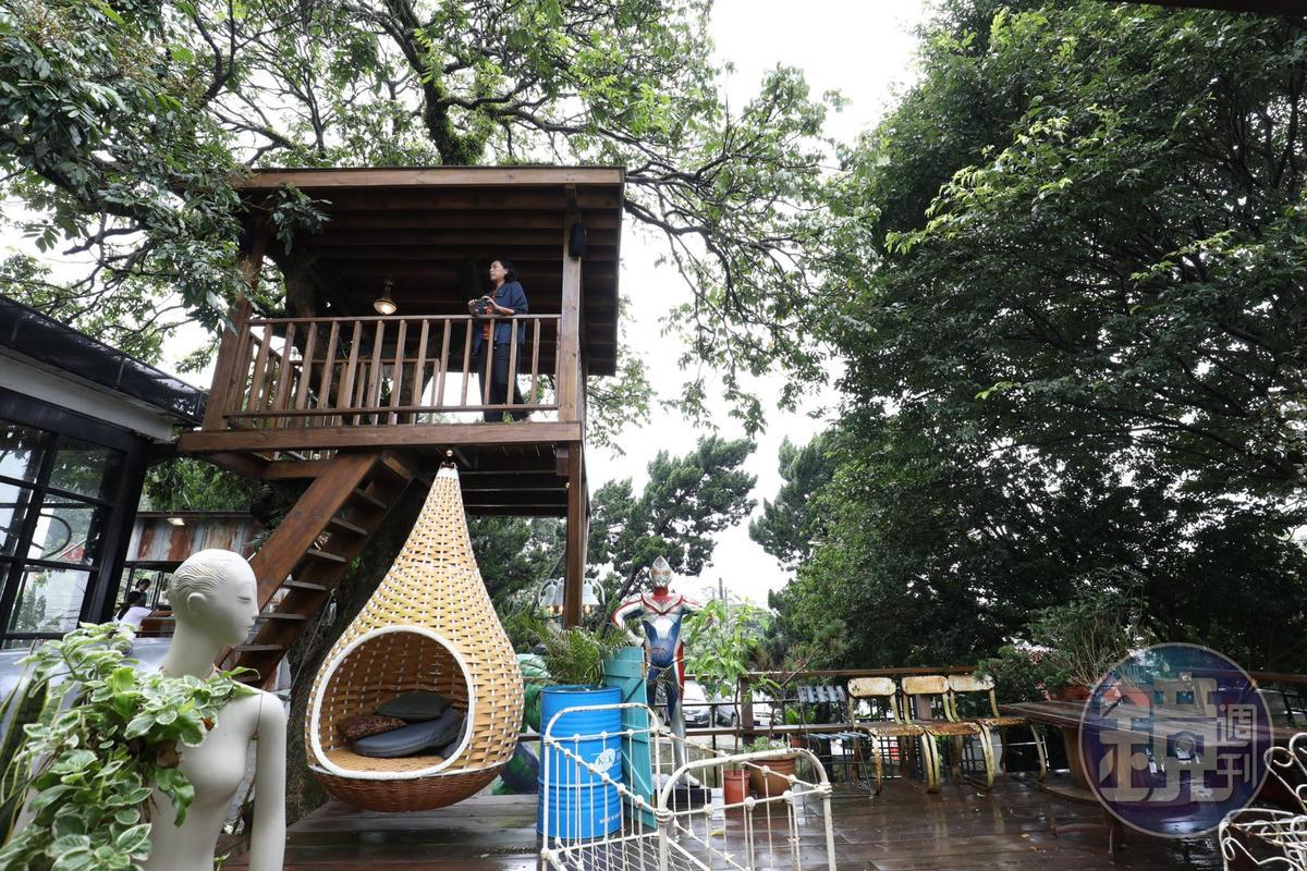 戶外平台及樹屋提供親子寵物玩樂空間。